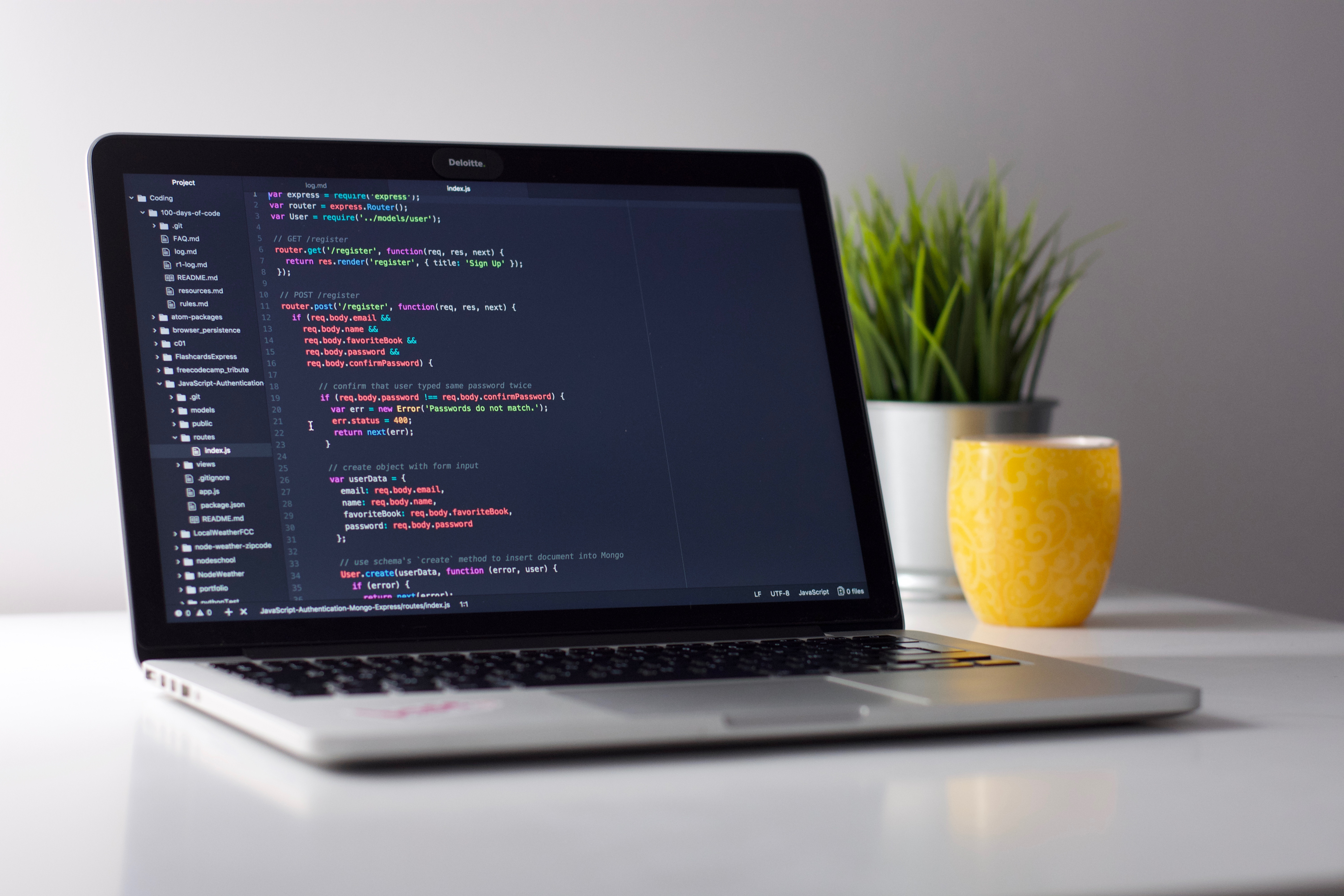 creating a professional website